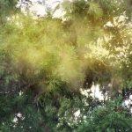 ハイドロ銀チタンが凄い!花粉症、ハウスダストアレルギーの人に救世主現る!